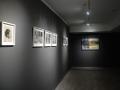 ws-image-exhibition-shot-1