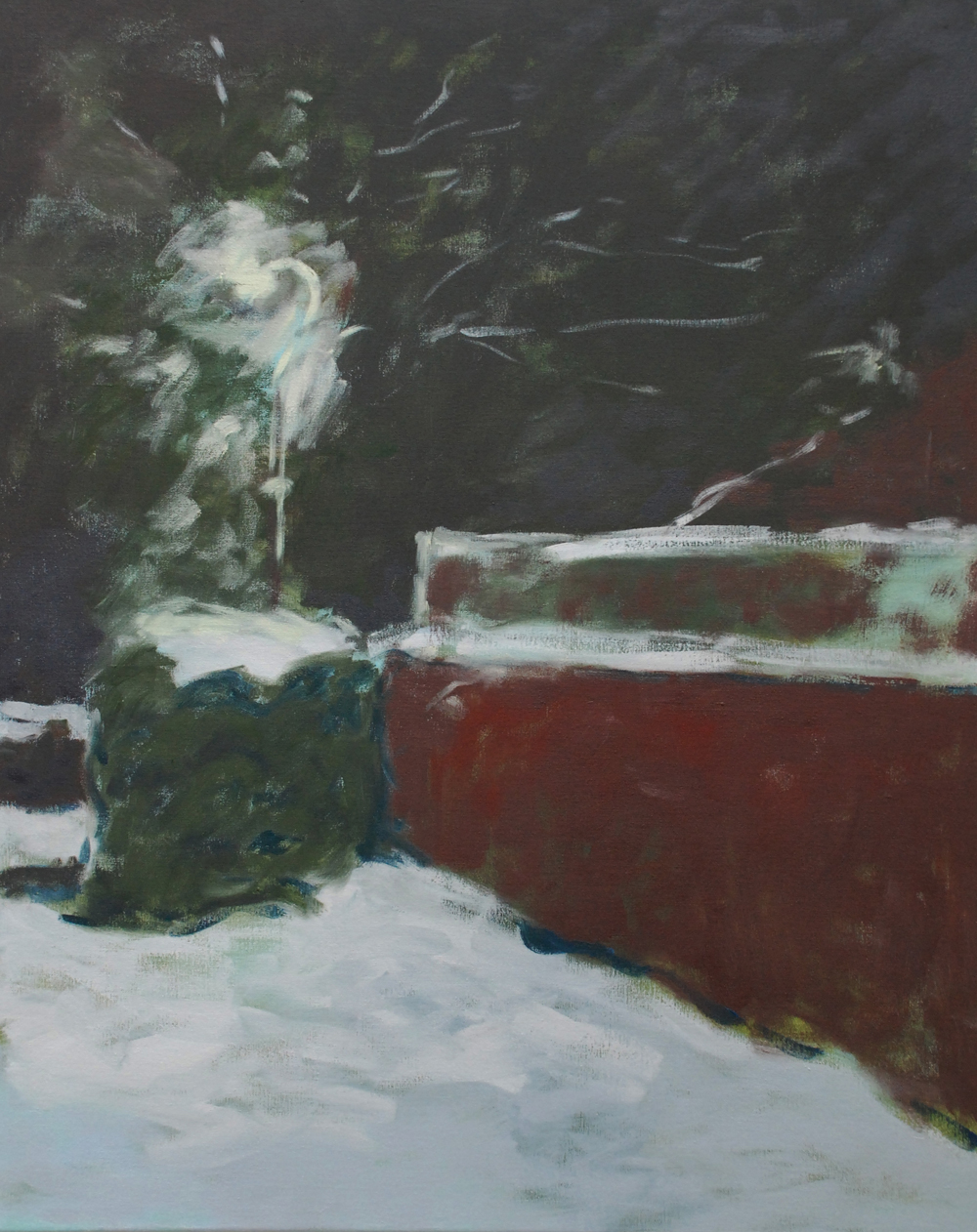 Night snow, 2015